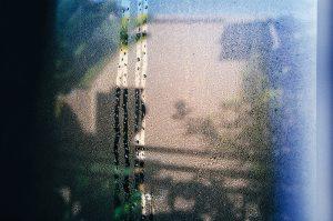 leak-web